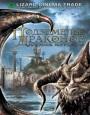 Подземелье драконов 2: Источник могущества